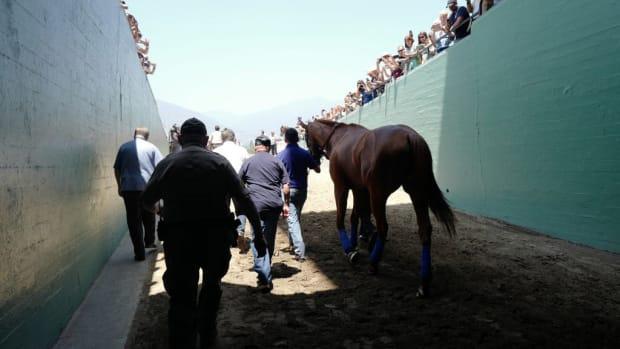 santa-anita-racetrack-horse-died.jpg