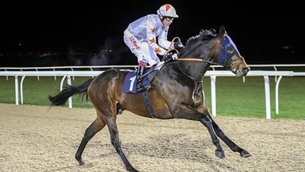gronkowski-horse-belmont-odds.jpg