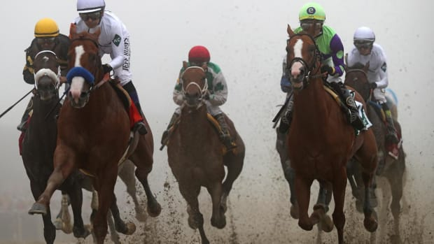 Justify Is Favorite to Win Belmont, Capture Triple Crown--IMAGE