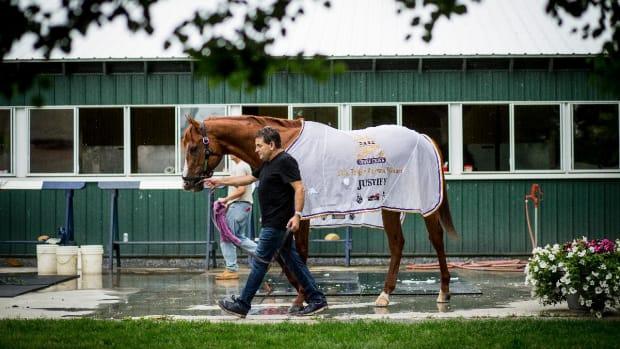2018 Triple Crown Winner Justify Retires From Horse Racing--IMAGE