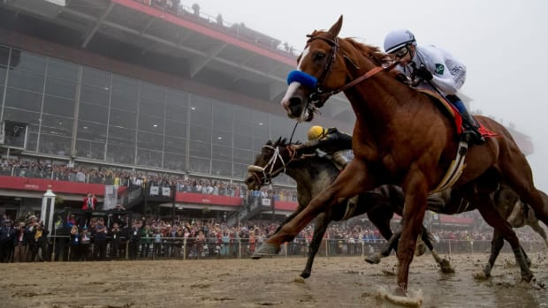 Justify Continues Triple Crown Quest With Preakness Victory--IMAGE