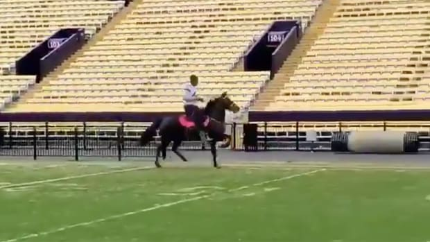 lsu-devin-white-horse-ride.png