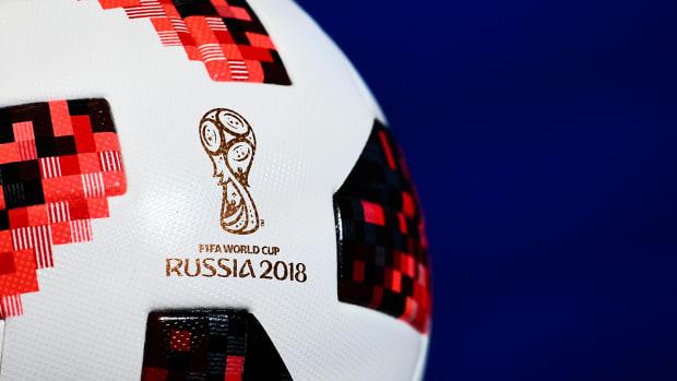 russia-world-cup-cat-predicting-dies.jpg