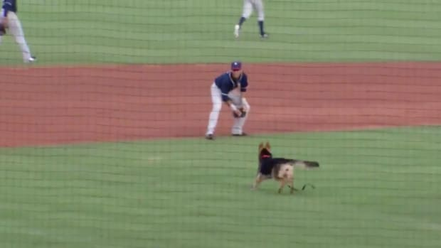 thursday-hot-clicks-tulsa-drillers-dog-delay-video.png