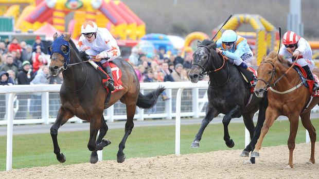 gronkowski-racehorse-belmont-stakes.jpg