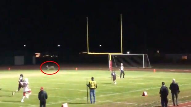 washington-high-school-football-deer-touchdown-return-video.png