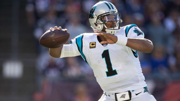 panthers-lions-watch-online.jpg