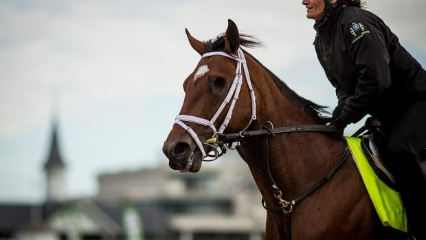 2017 Belmont Stakes preview: Irish War Cry, Epicharis lead way - IMAGE