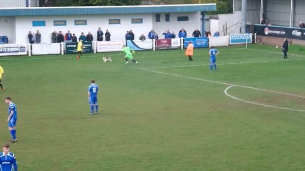 england-soccer-dog-pitch-invader-video.png