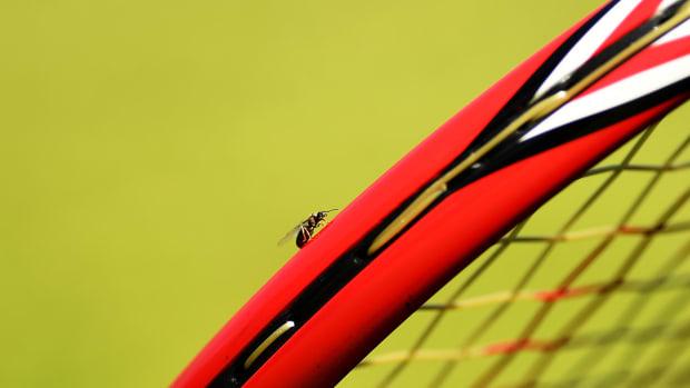flying-ants-wimbledon-lead.jpg