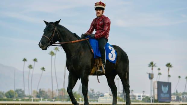 conor-mcgregor-horse-photos.jpg