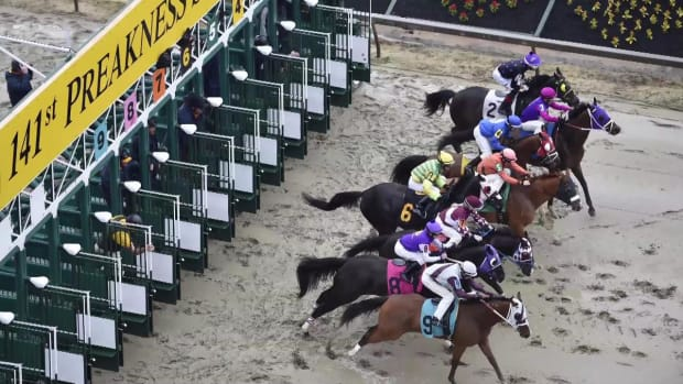 Two horses die after Preakness undercard races --IMAGE
