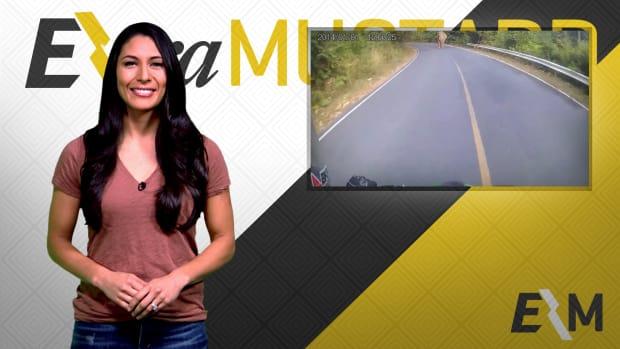Mustard Minute: Motorcyclist versus elephant IMG