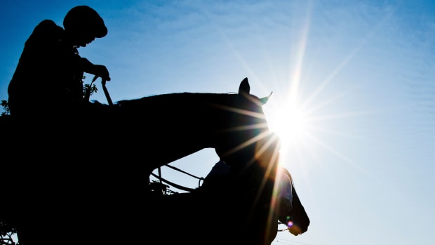 preakness-stakes-latest-betting-odds.jpg