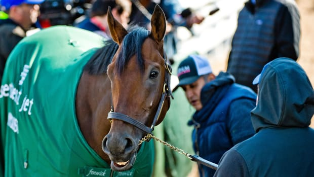 preakness-stakes-betting-odds-favorites-nyquist.jpg