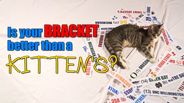 Mustard Minute: Is your NCAA Tournament bracket better than a kitten's? IMG