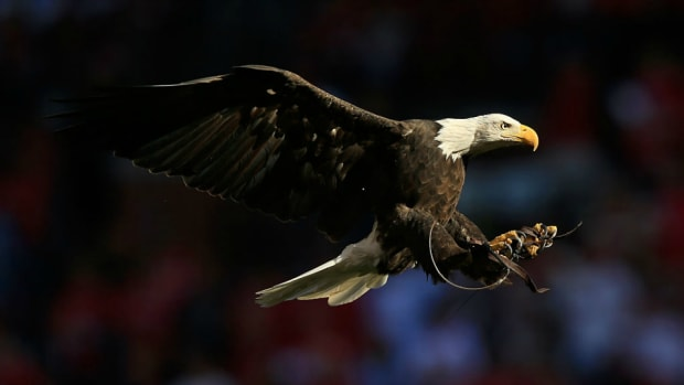 dodgers-eagle-july-fourth-fly-away-video.jpg