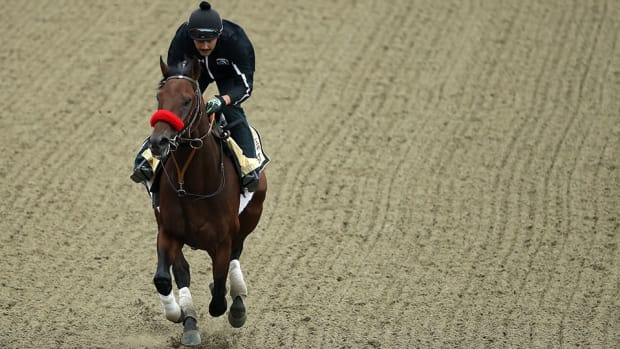 preakness-stakes-nyquist-preview.jpg