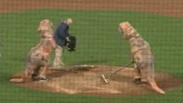 dinosaurs-groundscrew.png