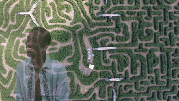 david-ortiz-davis-mega-maze-corn-photo.jpg