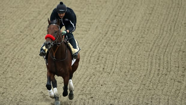 nyquist-preakness-stakes-weather.jpg