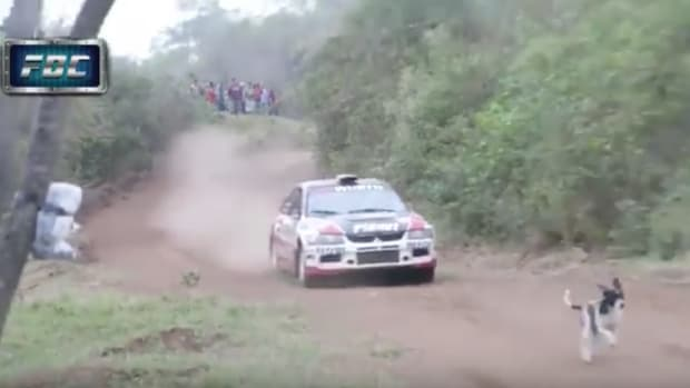 dog-escapes-death-bolivia-rally-car-video.png