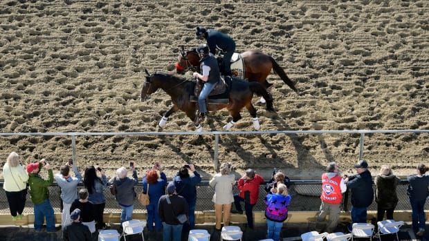 preakness-stakes-odds-betting-lines.jpg