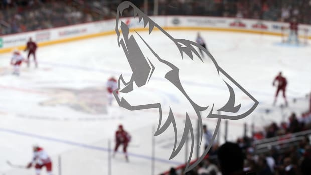 Coyotes hire Dawn Braid as NHL's first full-time female coach - IMAGE