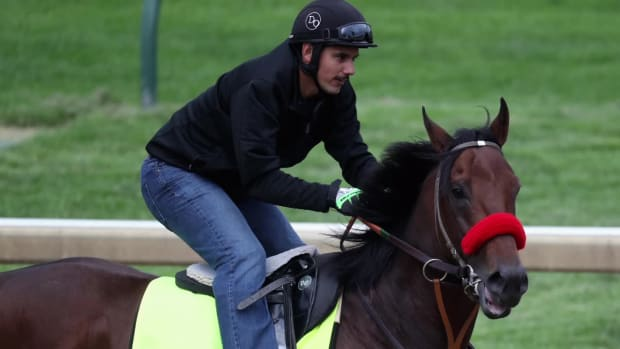 Nyquist listed as early favorite for 2016 Kentucky Derby -- IMAGE
