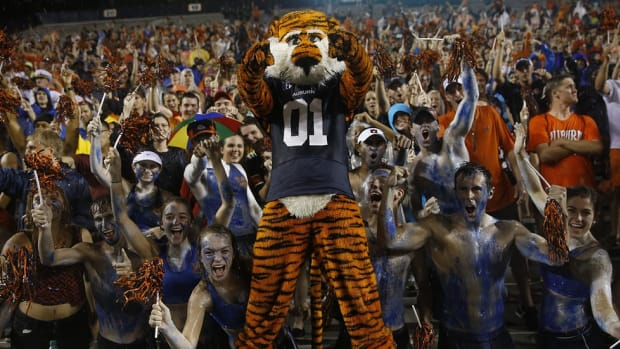 Aubie the Tiger is one crazy cat
