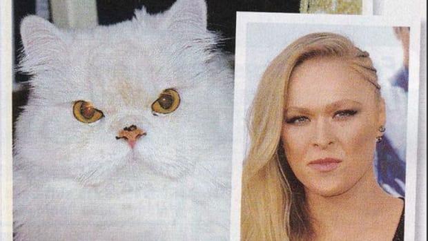ronda-rousey-cat-lookalike.jpg