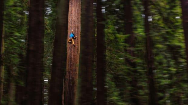 chris-sharma-freeclimbing-redwood-great-ascent-960.jpg