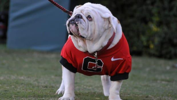 georgia-mascot-dies.jpg