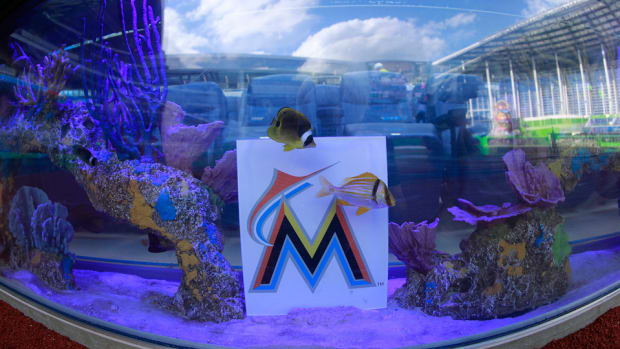 marlinspark_fishtank_062014.jpg