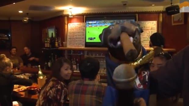 Triumph insult comic dog world cup2