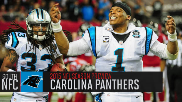 Carolina Panthers 2015 season preview IMAGE