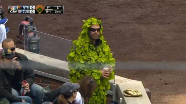 chicago-cubs-man-wears-ivy-wrigley-field.jpg