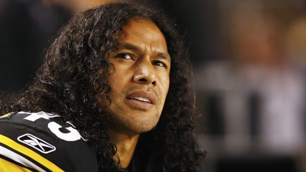 troy polamalu retirement
