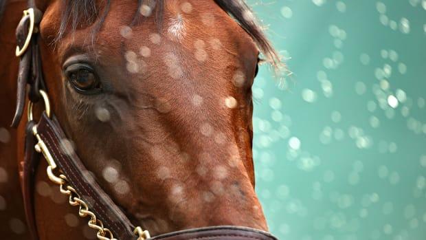 2157889318001_4268958262001_Belmont-Stakes-Odds-American-Pharoah-betting-favorite-.jpg
