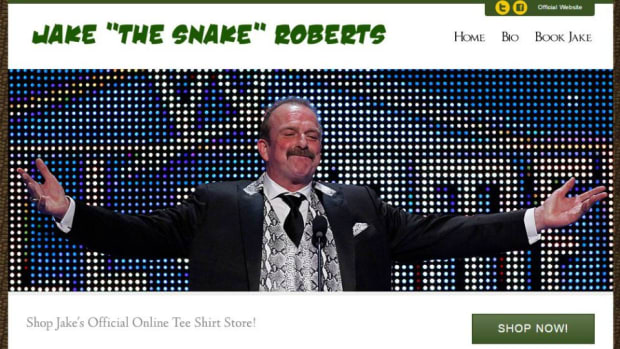 WWE-professional-wrestler-websites-lead.jpg