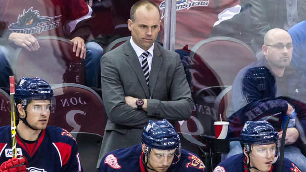Report: Red Wings to introduce Jeff Blashill as head coach Tuesday IMAGE