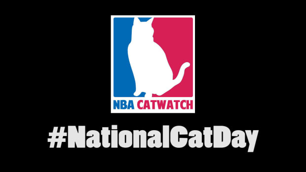 Mustard Minute: NBA Catwatch IMG