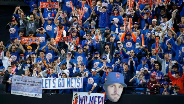 leibowitz-new-york-mets-fan-header.jpg