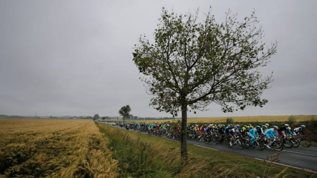 tdf-update-lead.jpg