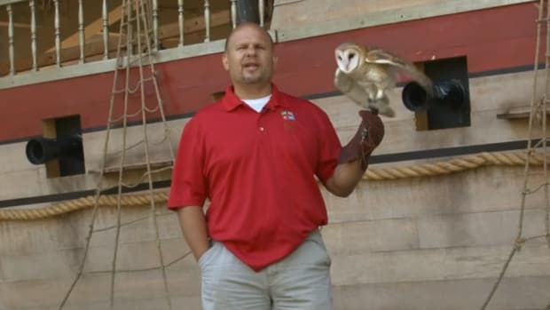 cleveland zoo owl lebron james staying with miami heat