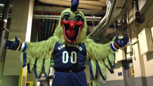 pierre-the-pelican-beak-surgery.jpg
