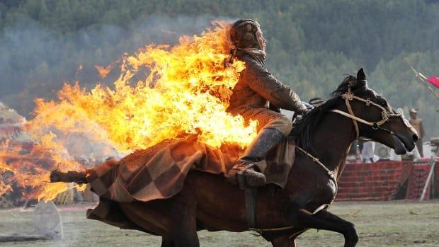 lead-2-horse-455239398_10.jpg