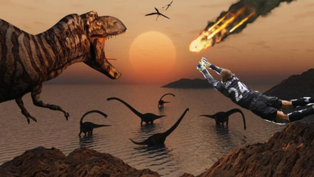 TimHowardDinosaurs