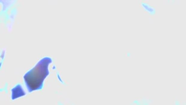 video_still_4485.jpg