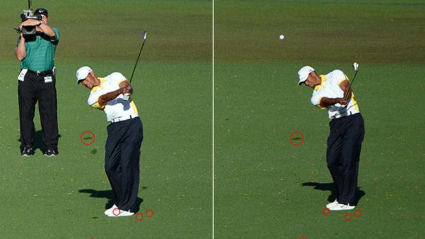 tiger-shots-side-by-side.jpg